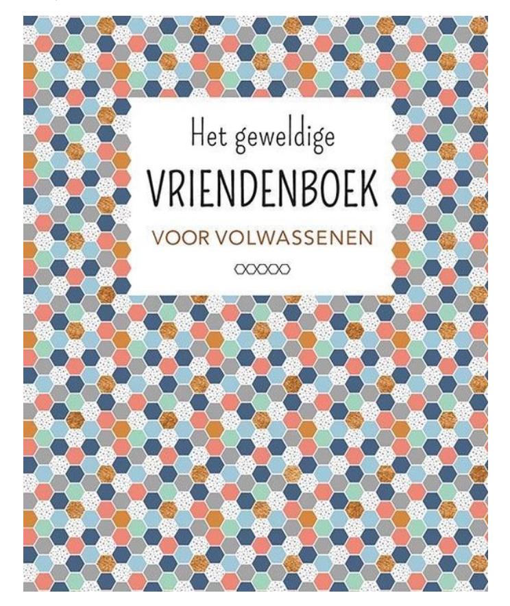 Het geweldige vriendenboek voor volwassenen-1