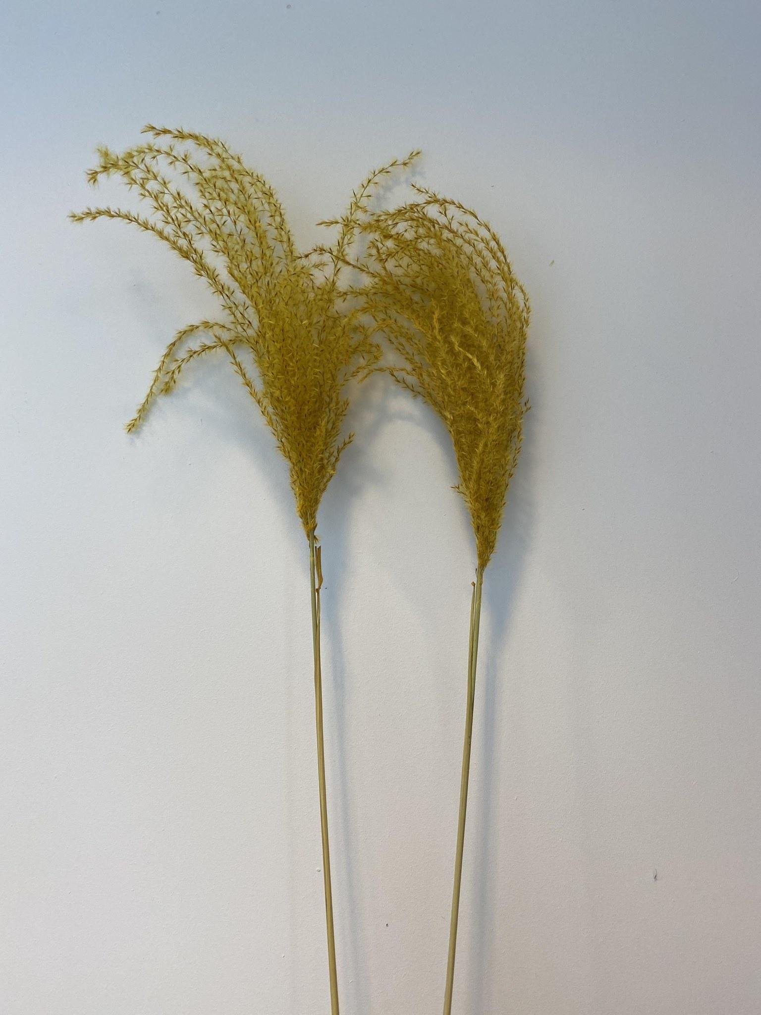 Flowerbar - Miscanthus Geel - Atelier Olala-2