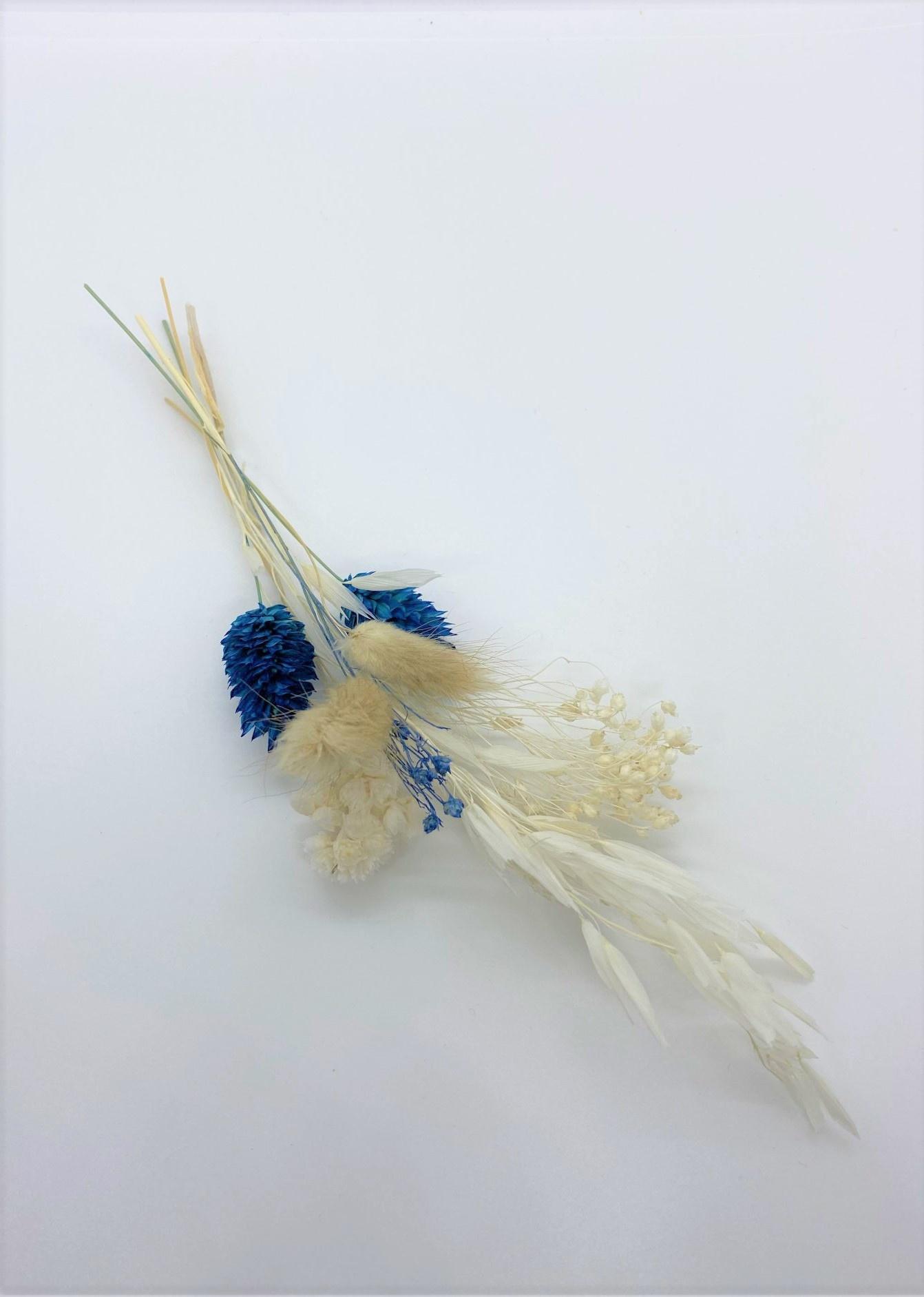 Mini Droogboeket Blauw - Atelier Olala-1
