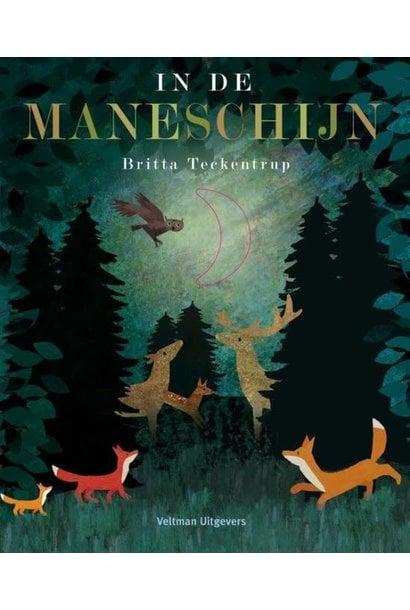 Boek - In De Maneschijn