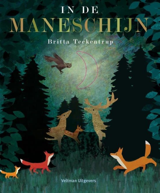 Boek In De Maneschijn - Britta Teckentrup-1