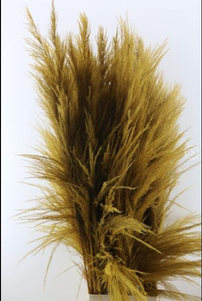 Flowerbar - Pampas Oker XL