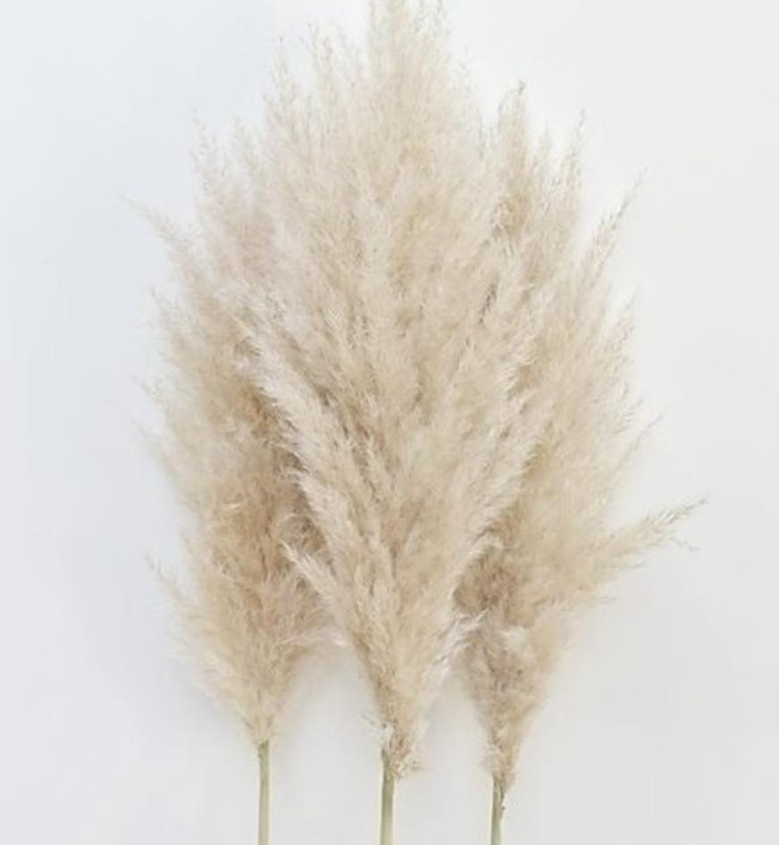 Flowerbar - Pampas Naturel - Atelier Olala-3