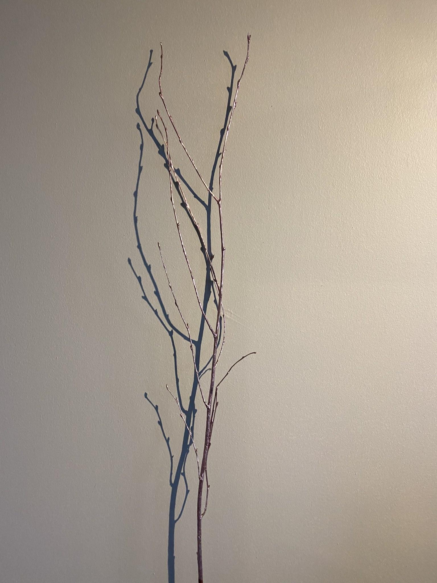Flowerbar - Berkentak Roze - Atelier Olala-1