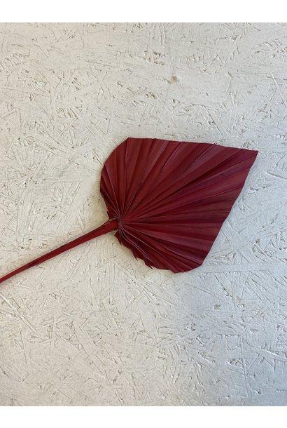 Flowerbar - Palmspeer Mini Rood