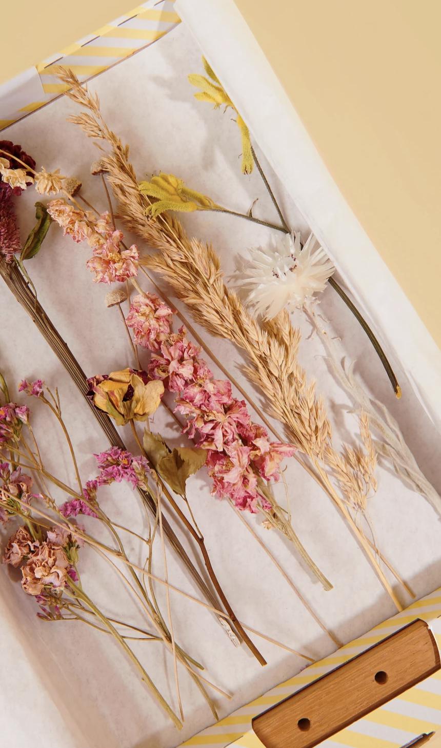 Houder Met Bloemen - Pink Melange-2