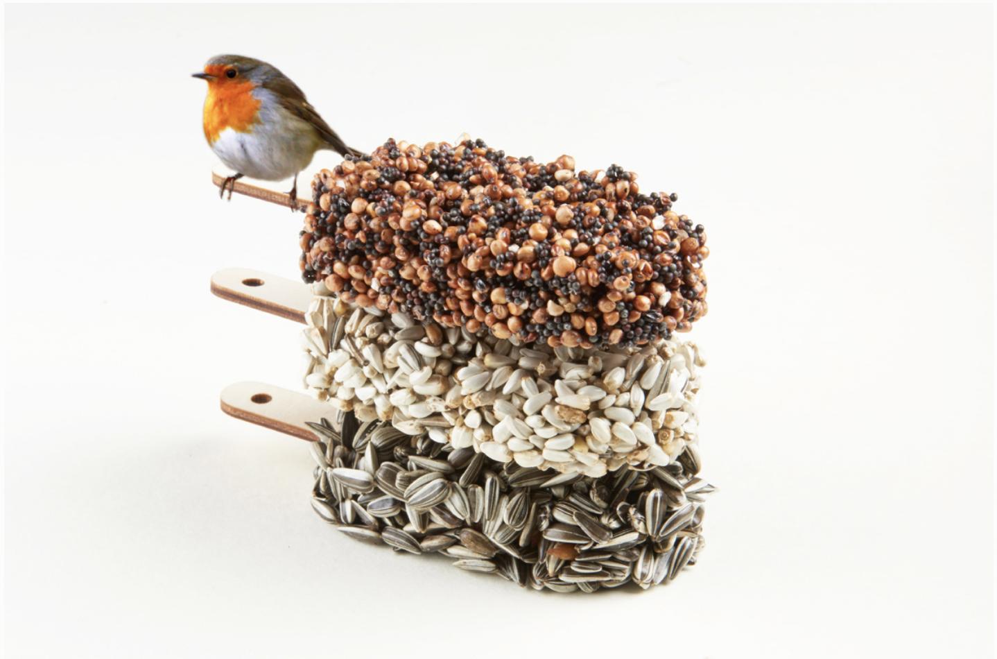 Desserts For Birds Classic Black-2