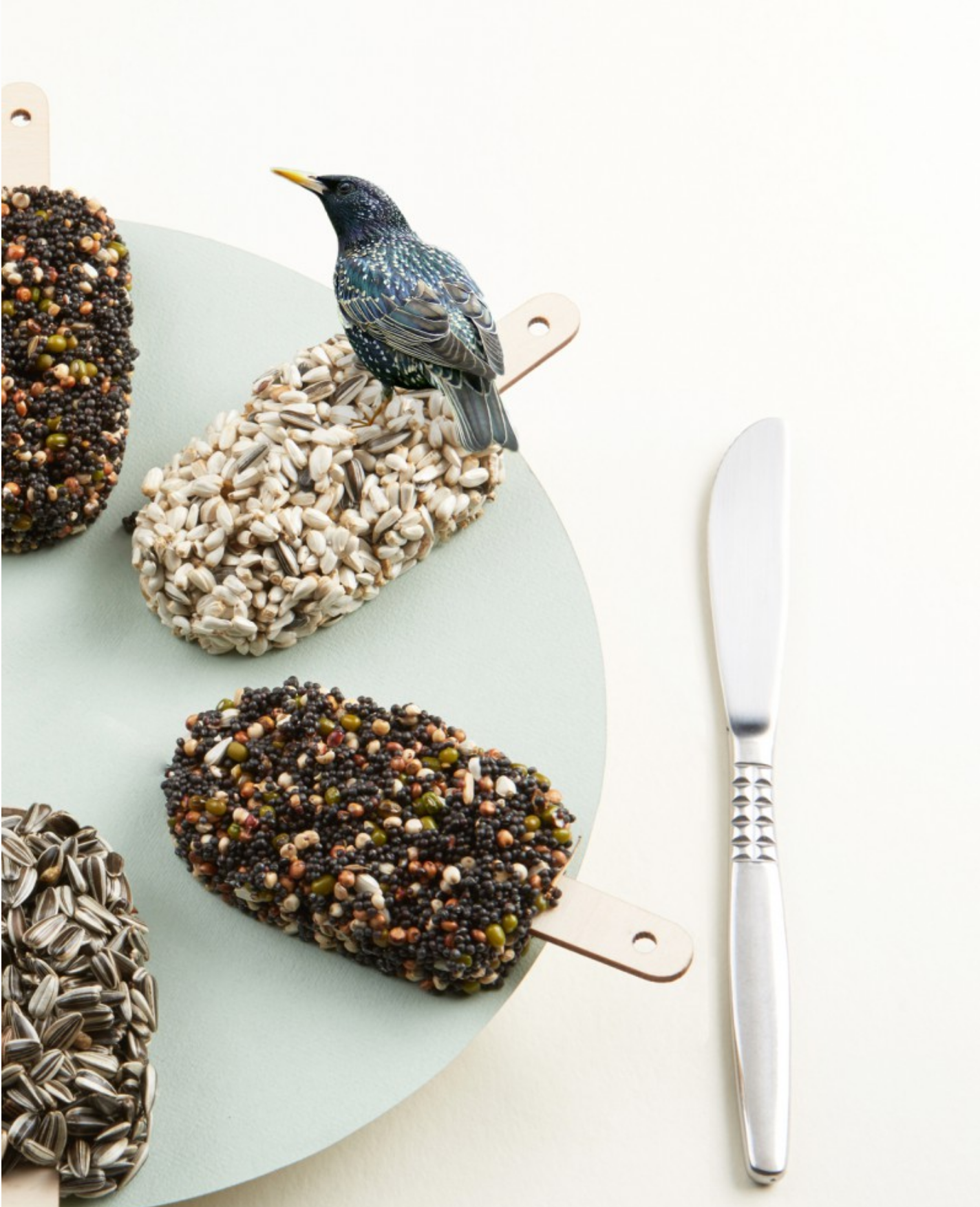 Desserts For Birds Classic Black-5