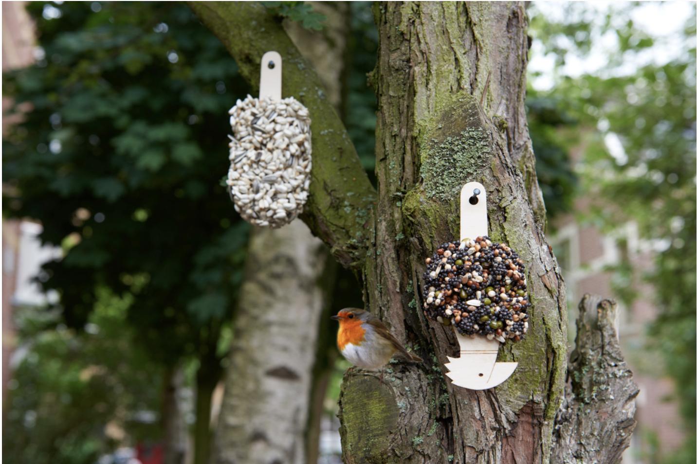 Desserts For Birds-3