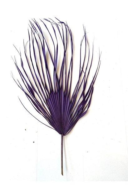 Flowerbar - Gedroogd Palmblad Paars