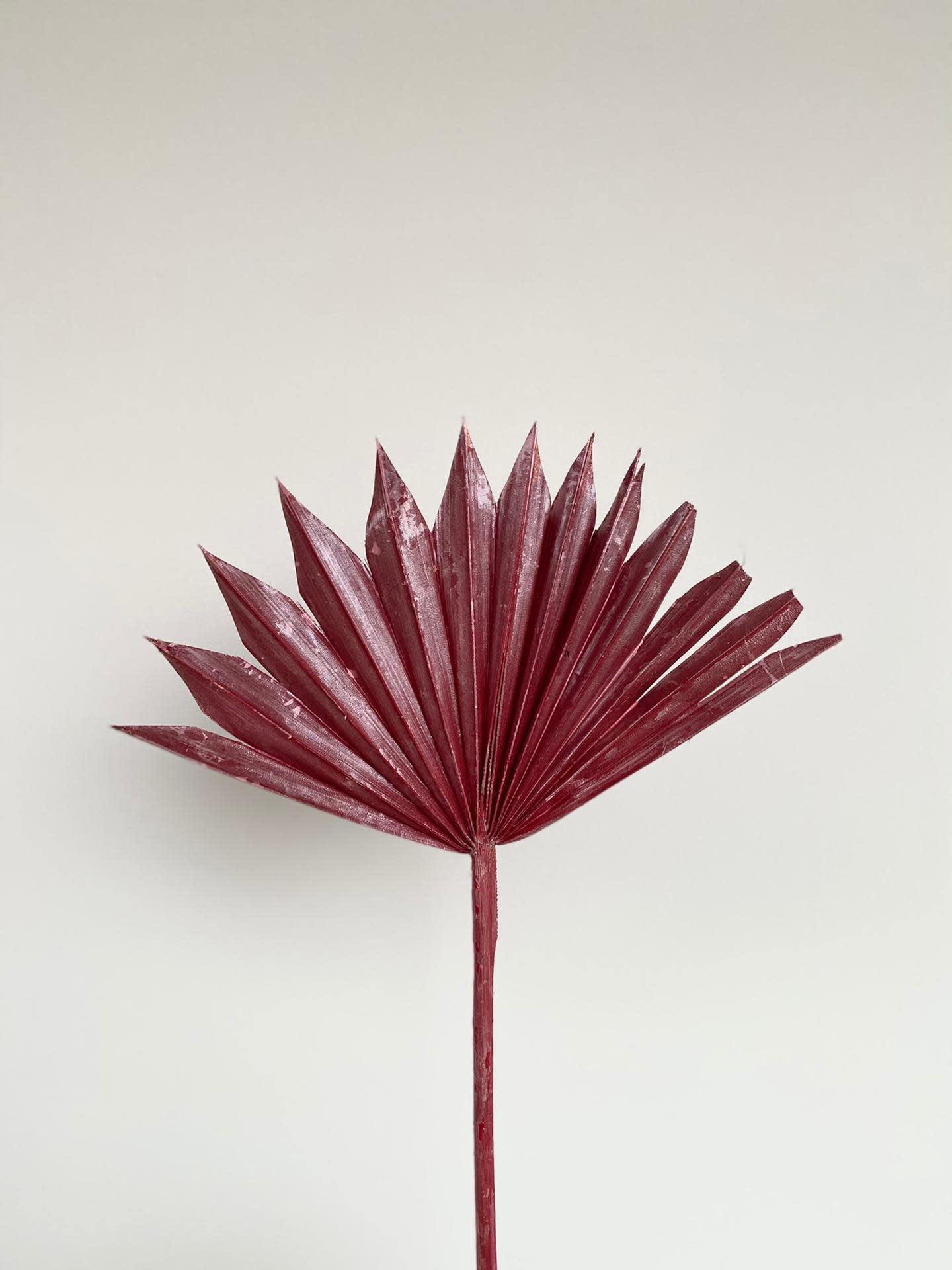 Palmblad Festive Red - Atelier Olala-1