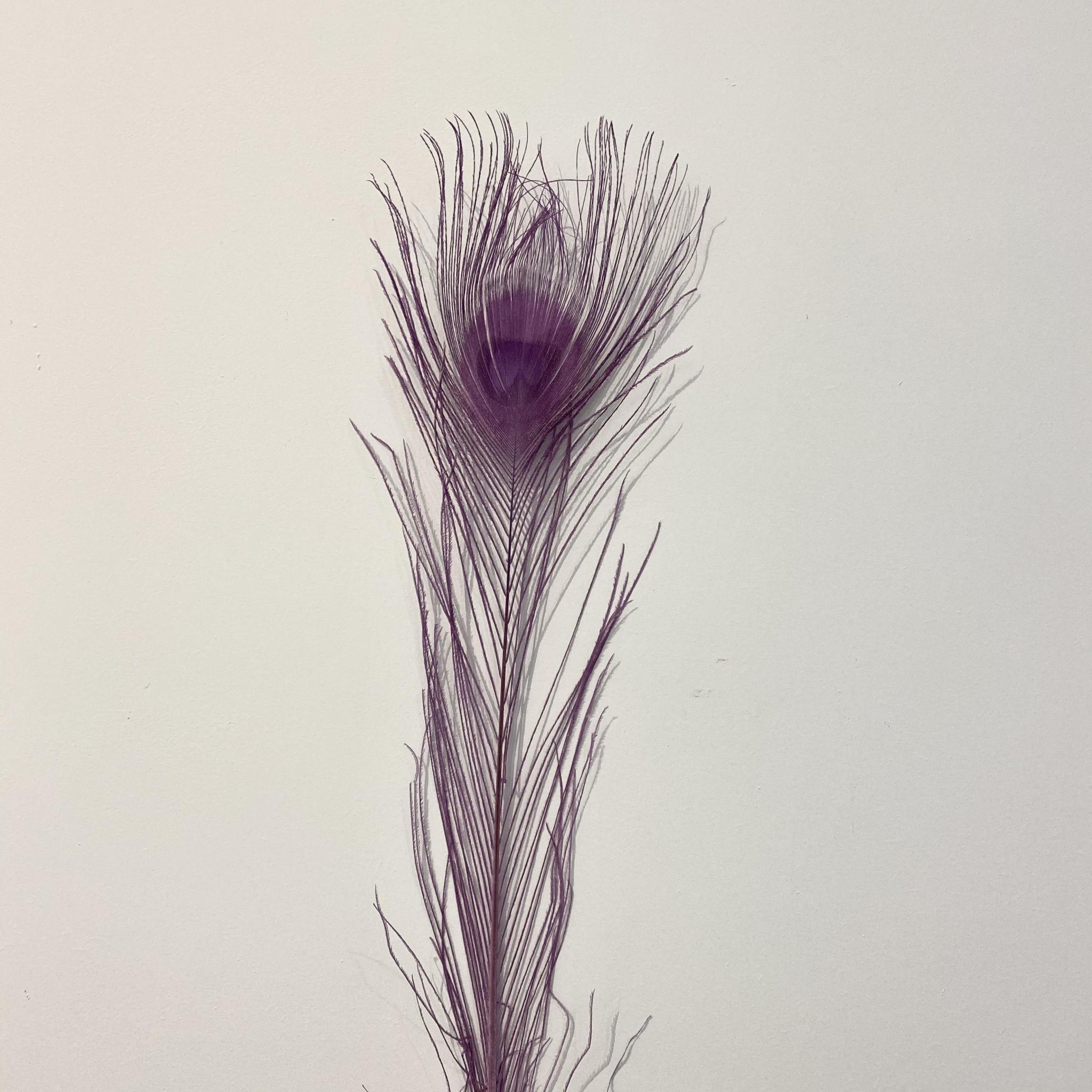 Flowerbar - Pauwenveer Paars XS - Atelier Olala-1