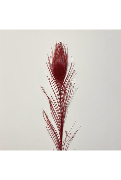 Flowerbar - Peacock Feather Red XS