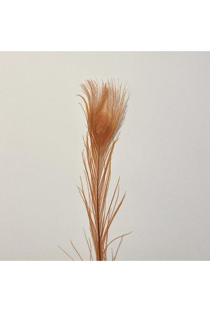 Flowerbar - Pauwenveer Oranje XS