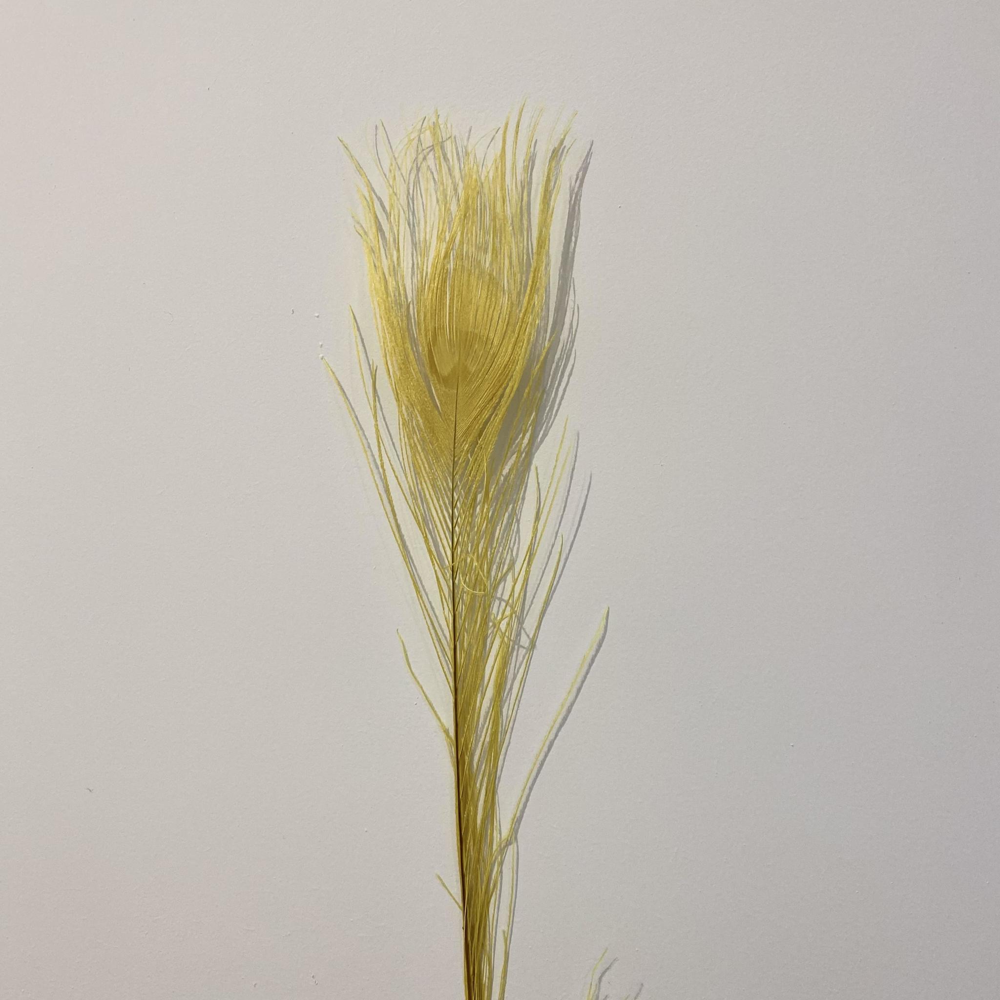 Flowerbar - Pauwenveer Geel XS - Atelier Olala-1