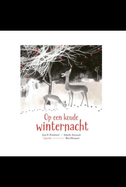 Boek - Op Een Koude Winternacht