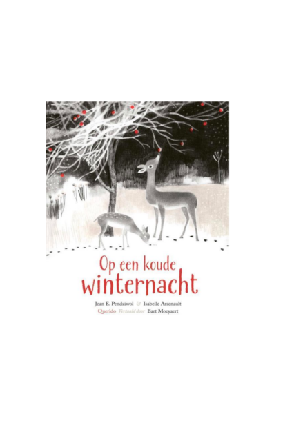 Book - On A Cold Winter Night