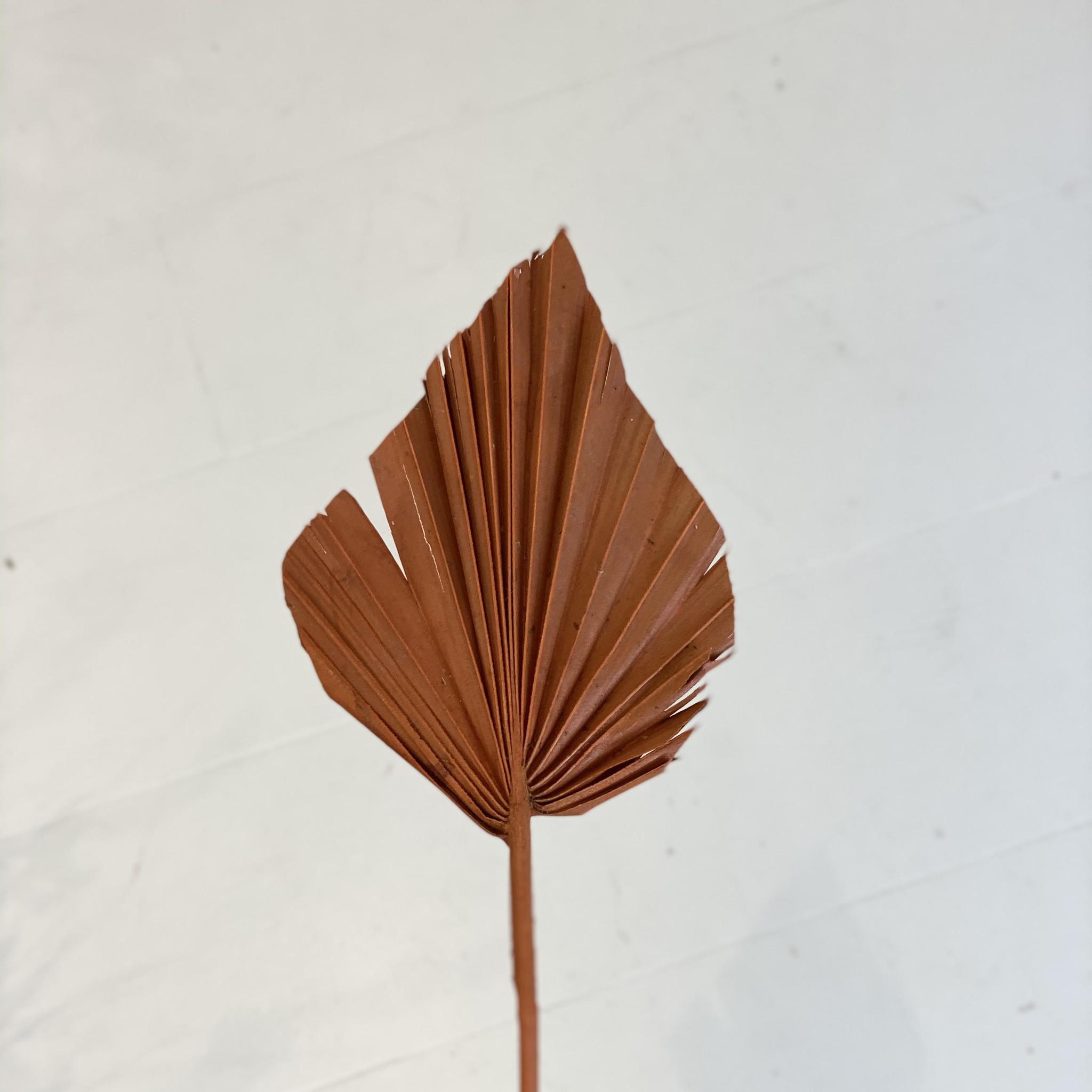 Palmspeer mini oranje-3