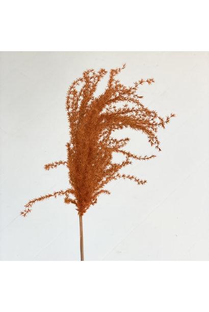 Flowerbar - Miscantus Oranje