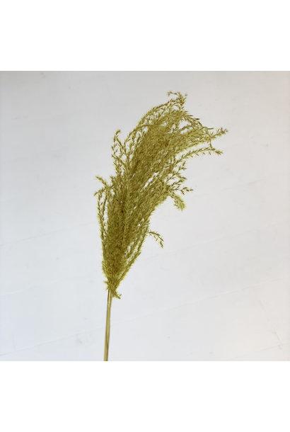 Flowerbar - Miscantus Geel