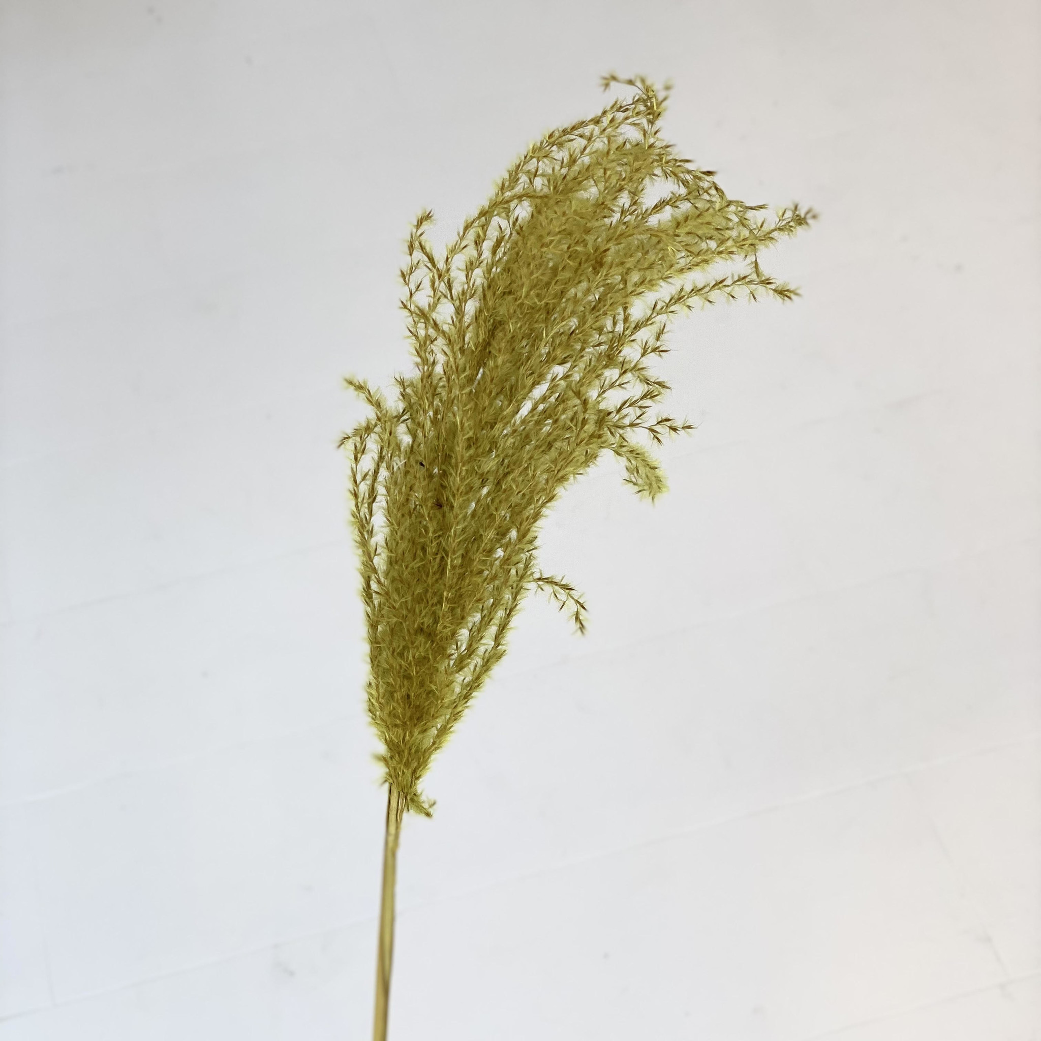 Flowerbar - Miscanthus Geel - Atelier Olala-1