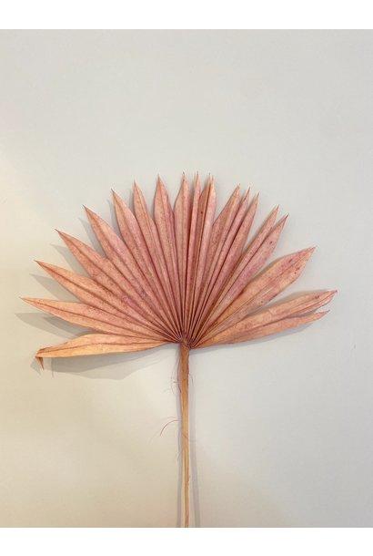 Palmblad Pastel Roze