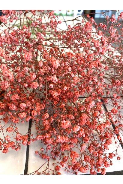 Flowerbar - Gypsophila Pink