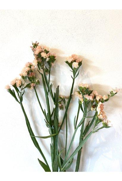 Flowerbar - Limonium Zalmroze