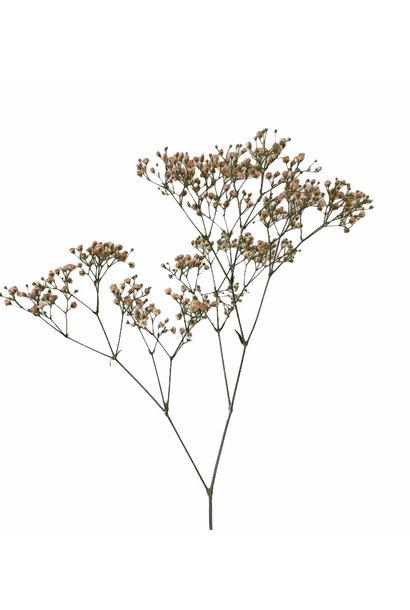 Flowerbar - Gypsophila Soft Pink