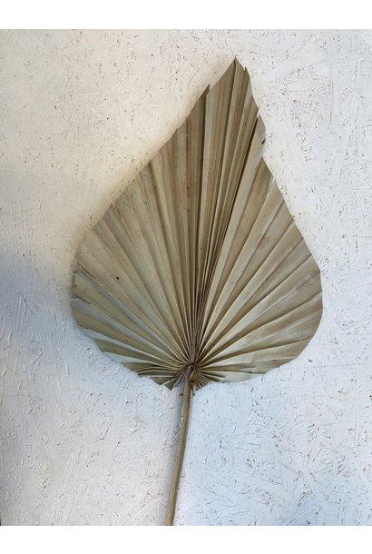 Flowerbar - Palmspeer Medium