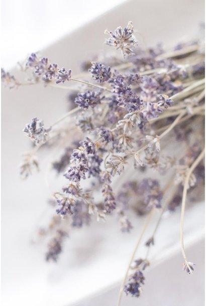 Gedroogde Lavendel Bussel