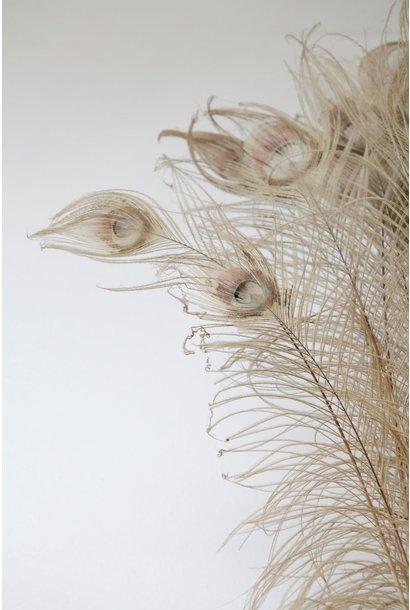 Flowerbar - Pauwenveer Gebleekt