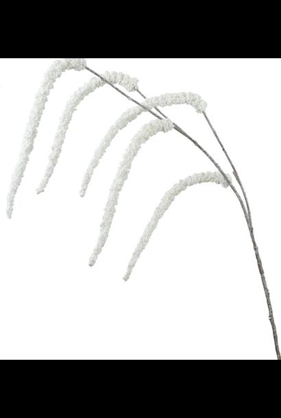 Flowerbar - Amaranthus Zilver Lang