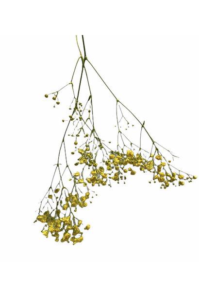 Flowerbar - Gipskruid Geel
