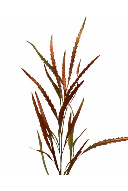 Flowerbar - Grevelia Herfst Groot