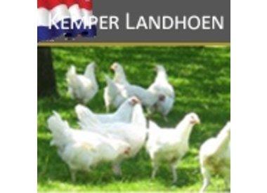 Kemper Landhoen