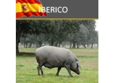 DeRaza Iberico