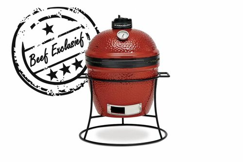 Kamado Joe Barbecue Joe Junior