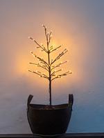Sirius Noah Tree H110cm, 40cm, Black
