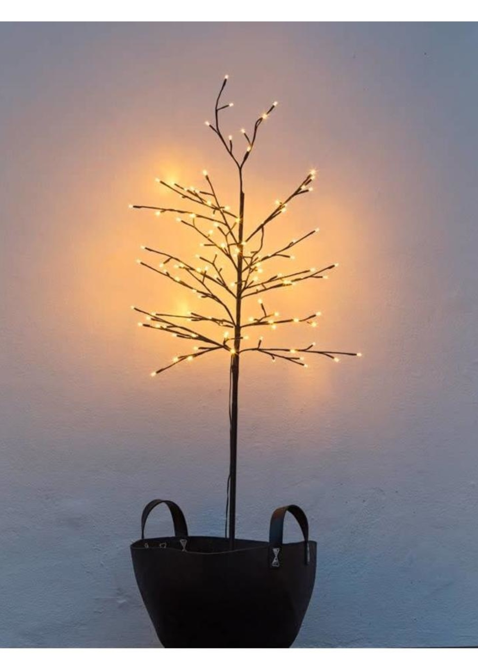 Sirius Noah Tree H150cm, 50cm Black