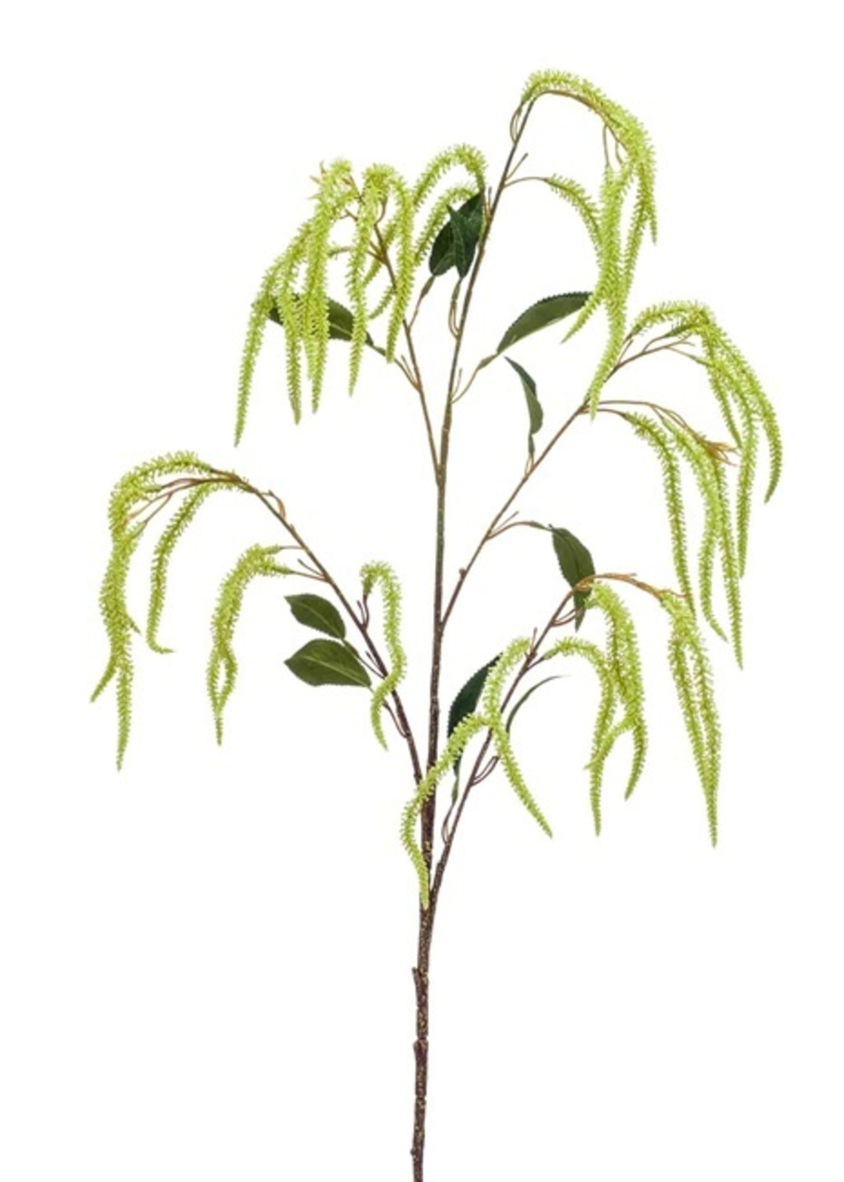 Emerald Eternal Green Amaranthus spray 100cm green