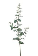 Emerald Eternal Green Eucalyptus spray 68cm green/grey