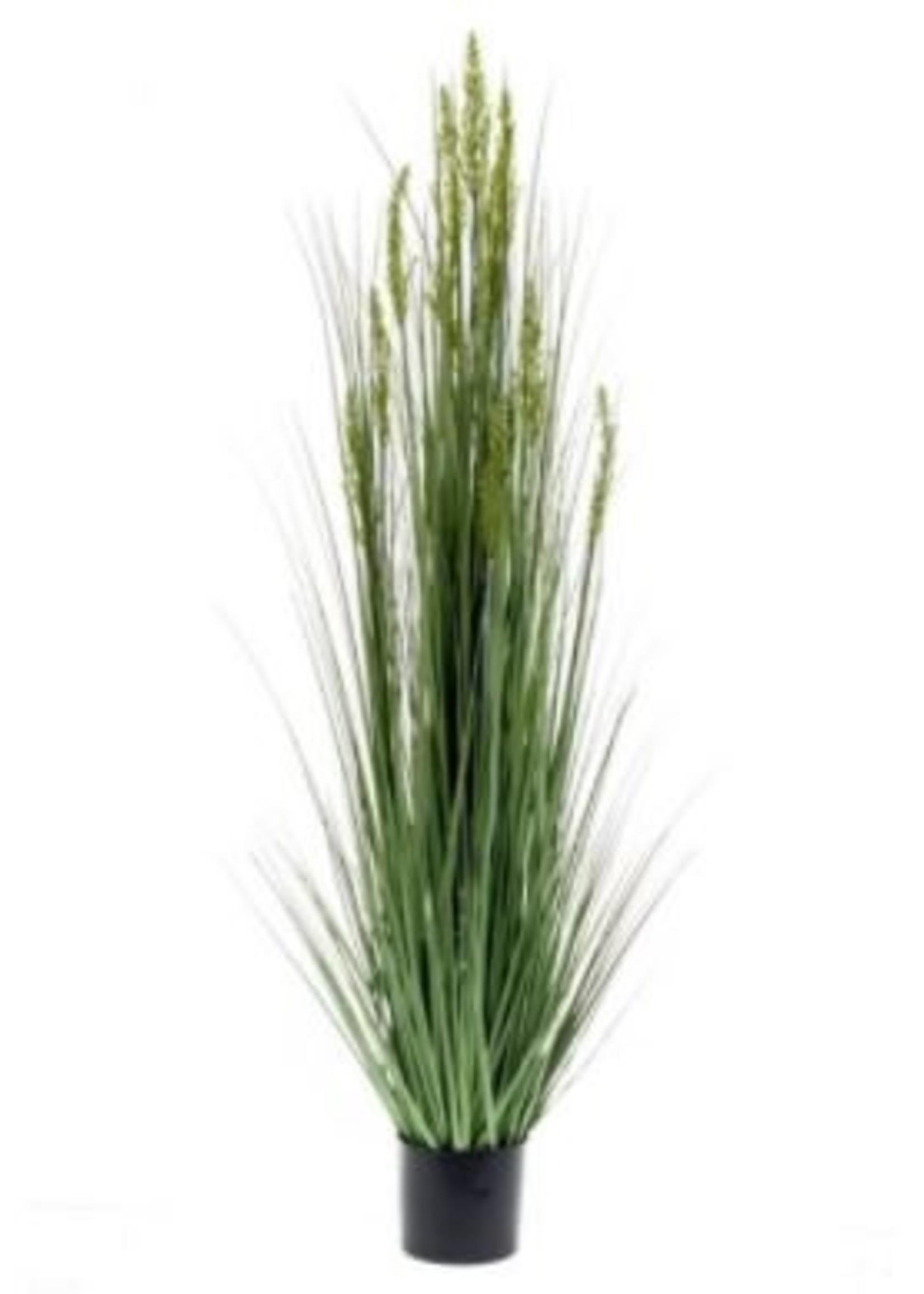 Emerald Eternal Green Grain grass 150cm