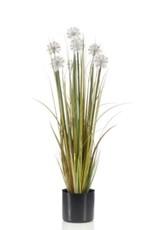 Emerald Eternal Green Dandelion grass 83cm autumn