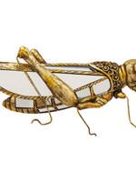 Kare Design Wall Decoration Grasshopper Mirror