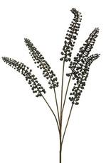 Zijde Phytolacca zwart 93cm