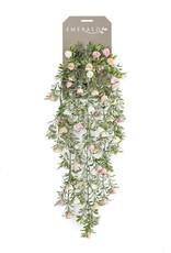 Emerald Eternal Green Rose mini hanging bush x5 75cm cream/pink