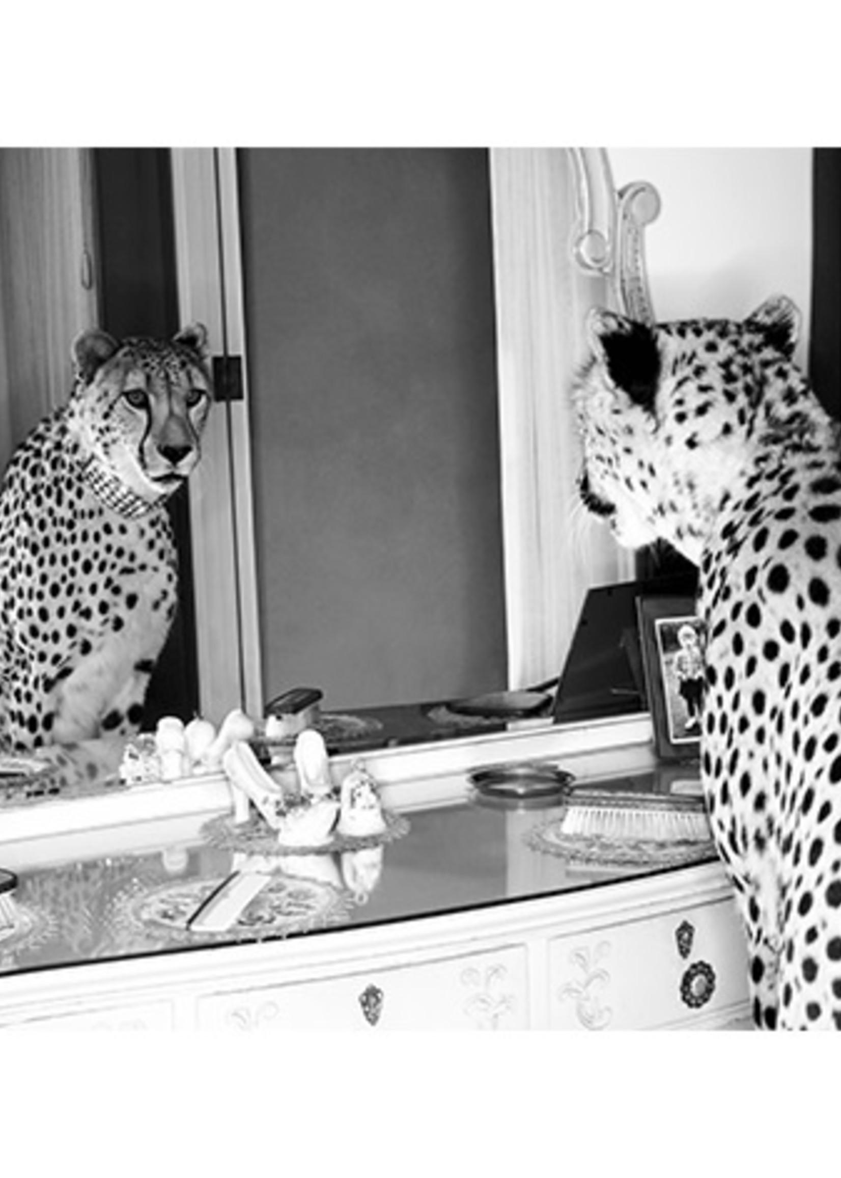 MondiArt Cheetah looking in mirror 24/30