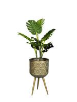 Zuiver Plant Stand Botanique M