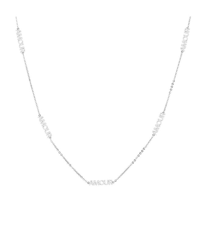 Silver Amour Necklace